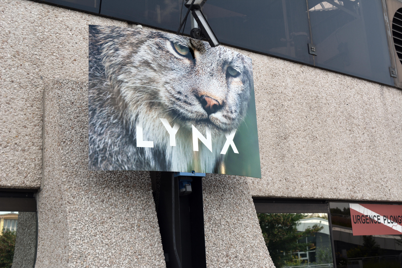LynxMakara
