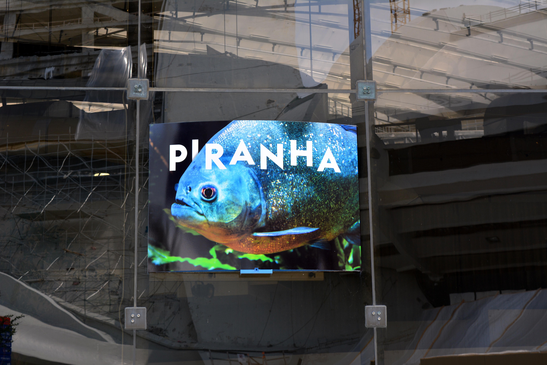 PiranhaMakara