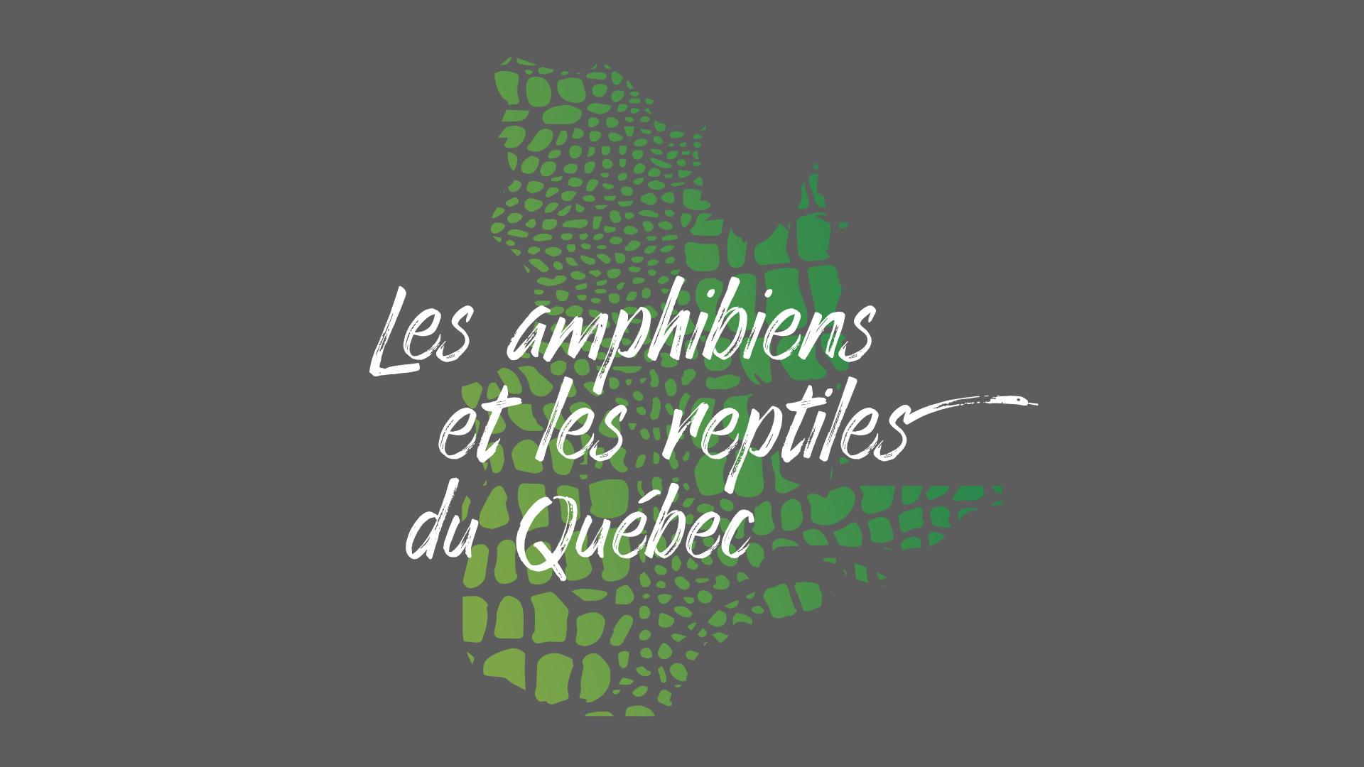 Reptiles-01