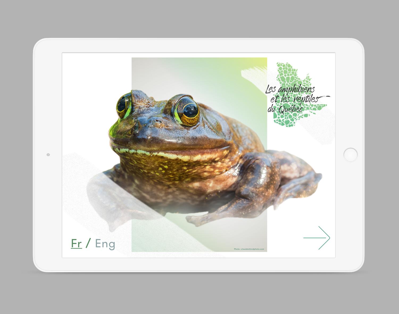 iPad-Amphibiens3